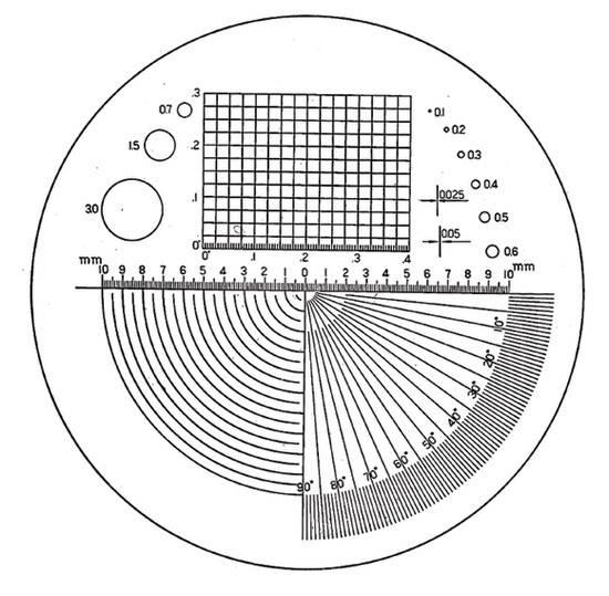 Ersatz-Präzisions-Skala Typ B Eschenbach 115202 für Skalenlupe